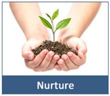 nurture your prospect